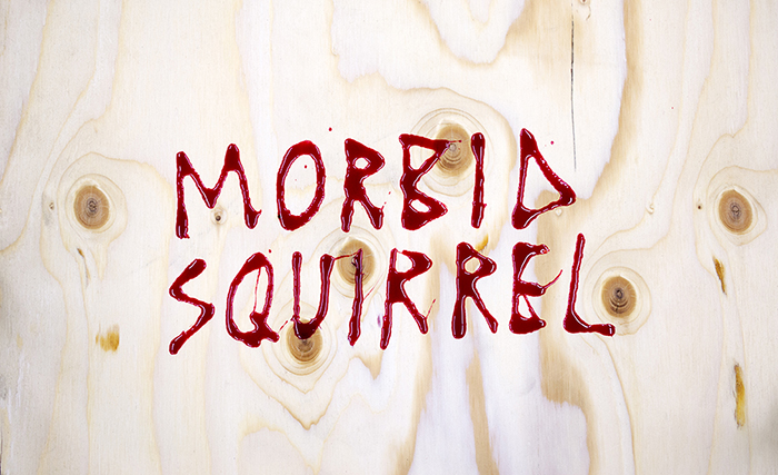 morbidsquirrel_web