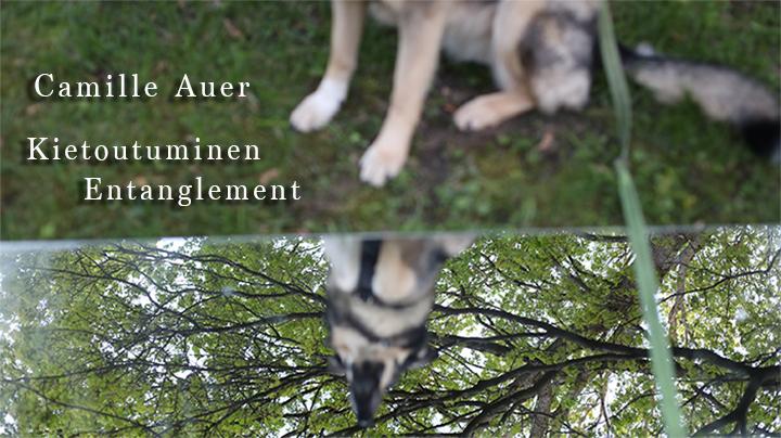 Camille Auer – Kietoutuminen / Entanglement