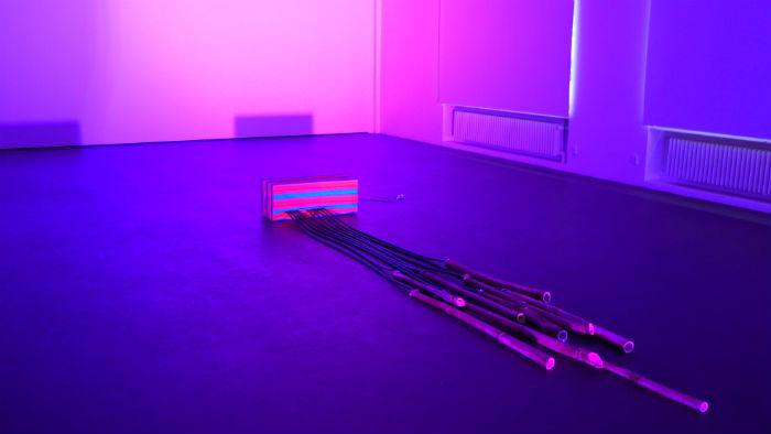 Tampere Biennale: Max Savikangas — Lintukoto & Antti Tolvi — Metsän Harmonia