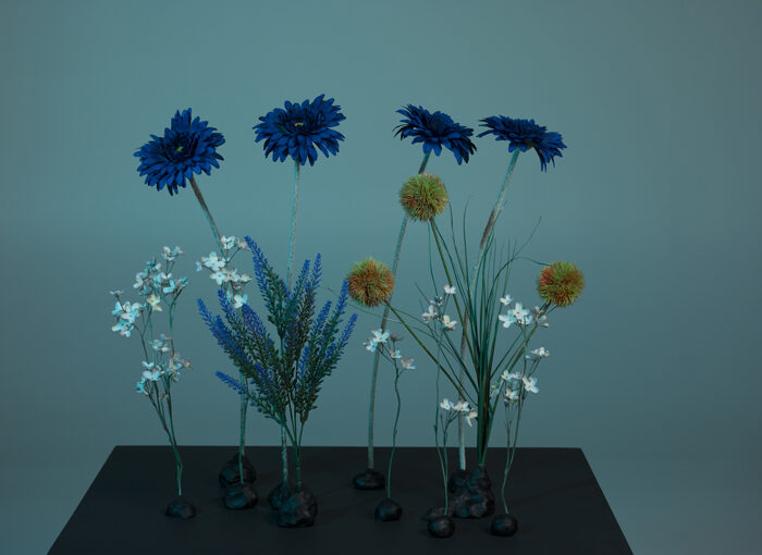 Venla Laksola – Kukat jotka jäivät